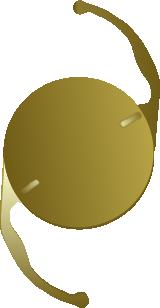 Toric Lens